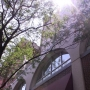 - 1314 Locust Street - Библиотека Компания