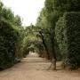- Piazza de' Pitti, 1 - Сады Боболи